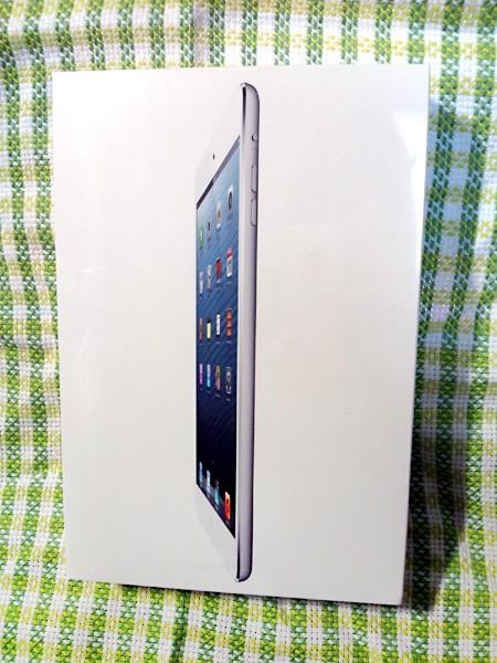 仕事決まりました/iPad miniをお迎えしたよ